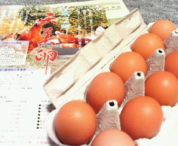 天美卵.jpg